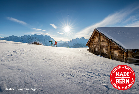 Discover the Bernese Winter